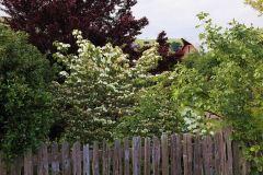 applegarden-farm-cottage-gallery-6