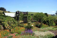 applegarden-farm-cottage-gallery-7